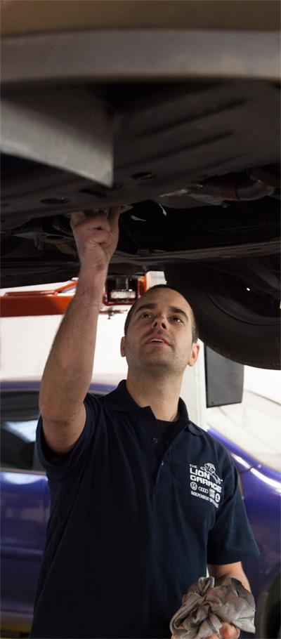Servicing Lion Garage